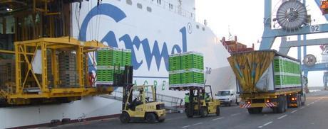 Un cargo d'Agrexco-Carmel au port de Marseille. Photo (DR)