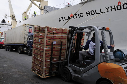 Maritime transport can offer a viable alternative to road transport for fruit and vegetables. (Philippe Mahe - Photographer)
