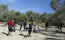Plus d'un million de migrants arrivés en Europe en 2015